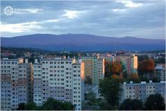 Jolanta-Wilkonska