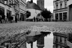 wyroznienie-Emilia-Kraus